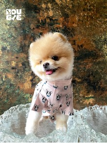 Peach Little Frenchie Shirt - Authentic Japan